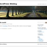 Was, bloggen? Wir sind jung und publizieren!